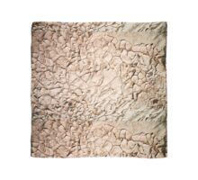 Water shortage and drought Dry cracked mud  Scarf