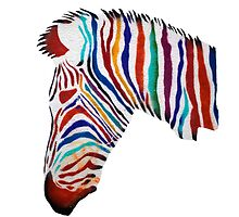 Colorful zebra rainbow smiling profile by frenchorange
