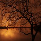 THE LIGHT ON THE LAKE by leonie7