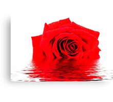 Red Rose Reflection Canvas Print
