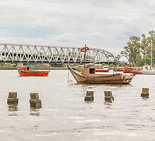 Boats at Santa Lucia River in Montevideo Uruguay by DFLC Prints