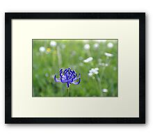 Blue Crown Framed Print