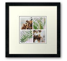 Floral Panes Framed Print