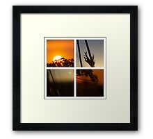 Floral Panes - Sunrise Sunset Framed Print