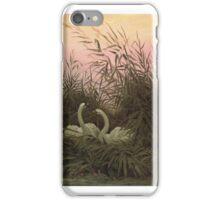 CASPAR DAVID FRIEDRICH, SWANS IN THE REEDS iPhone Case/Skin