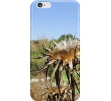 Dry milk thistle in summer Photographed in Israel in July iPhone Case/Skin