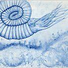 Devonian Blues - Ammonite by Bart Castle