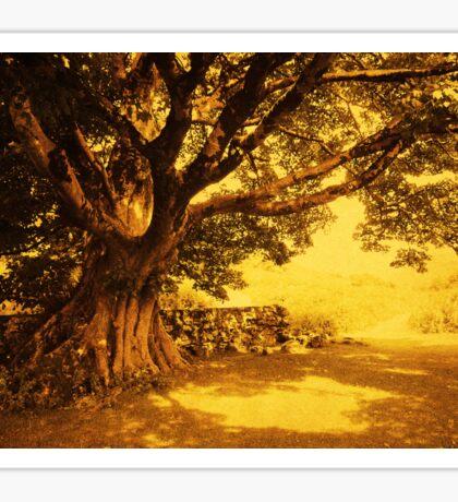 Spiritual Place. Wicklow Mountains. Ireland Sticker