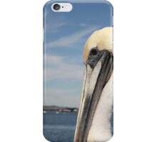 San Diego Pelican iPhone Case/Skin