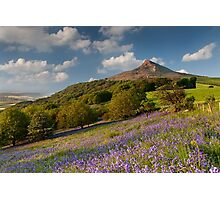 Rosberry Topping Bluebell Woods Photographic Print