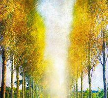 Autumn Trees by Svetlana Sewell