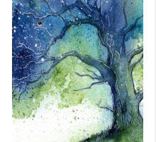 Oak Tree Fireflies Sticker