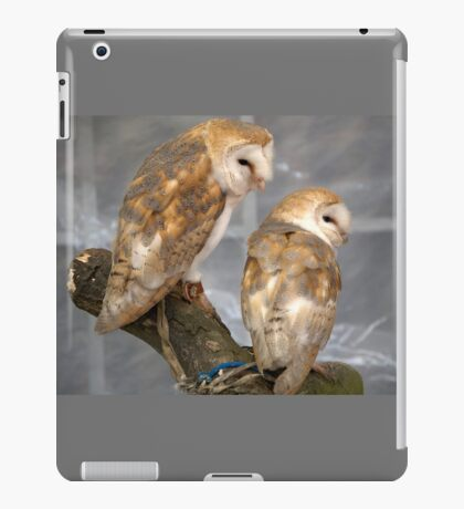 Barn Owls iPad Case/Skin