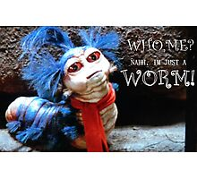 Labyrinth Worm Photographic Print
