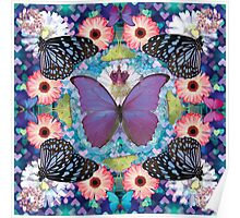 queen of the butterflies Poster
