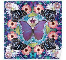 queen of the butterflies Poster