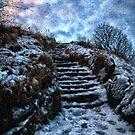 Slippery climb by Simon Duckworth