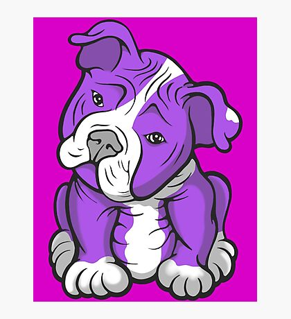 Pit Bull  Pup Tilted Head Cartoon Purple Photographic Print