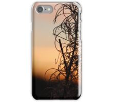 Leafy Sunset Silhouette iPhone Case/Skin