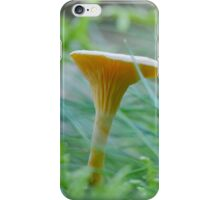 Standing firm in the Strong Winds iPhone Case/Skin
