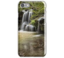 Waterfall Oasis iPhone Case/Skin