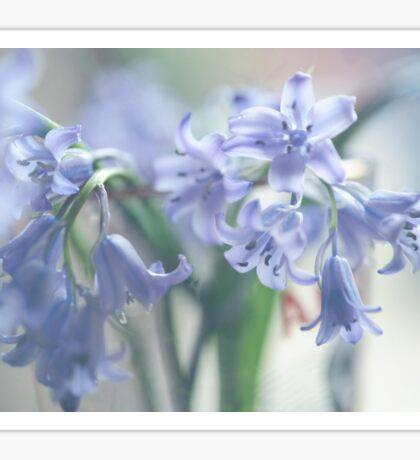 Ethereal BlueBells  Sticker