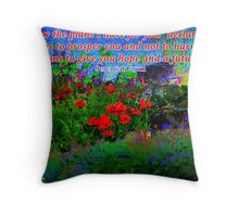 For I Know The Plans I Have For You Throw Pillow