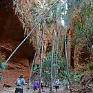 Into Echidna Chasm by Graeme  Hyde