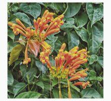 Spectacular orange trumpet flower Kids Tee