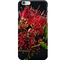 Kunzea or Bottle brush flower Leith Park Victoria 20151109 0664   iPhone Case/Skin