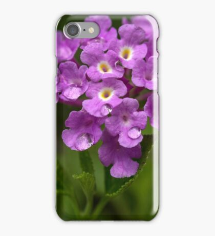 A touch of spring... (from the archives) iPhone Case/Skin