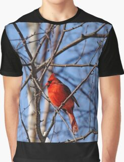 Brilliant Red Graphic T-Shirt