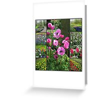 Keukenhof Collage featuring Pink Anemones Greeting Card