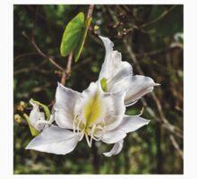 Beautiful Butterfly tree flower One Piece - Long Sleeve