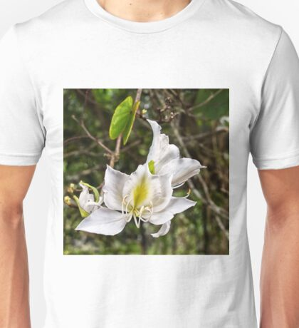Beautiful Butterfly tree flower Unisex T-Shirt
