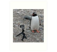 Gentoo penguin selfie in Antarctica  Art Print