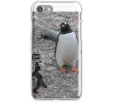 Gentoo Penguin Selfie Antarctica,  Inquisitive (4)  iPhone Case/Skin
