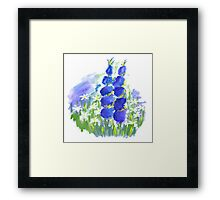 Beautiful Garden Framed Print
