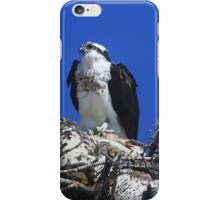 Osprey iPhone Case/Skin