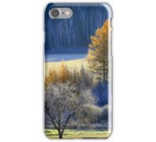Landscape in Quebec  iPhone Case/Skin