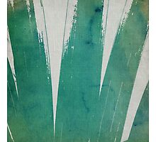 green ink - II Photographic Print