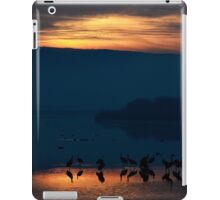Common crane (Grus grus) Silhouetted at sun-set iPad Case/Skin