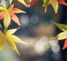 Autumnal beauty  Sticker