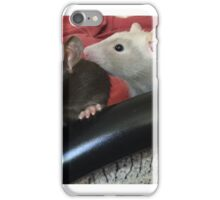 Rocco and Baxter iPhone Case/Skin