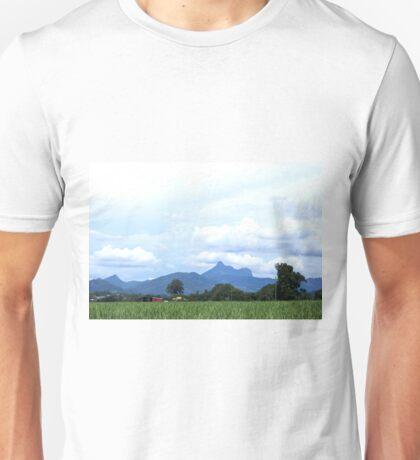Mt Warning ~ sweet sugar T-Shirt
