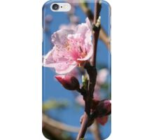 Delicate Buds of Peach Tree Blossom iPhone Case/Skin