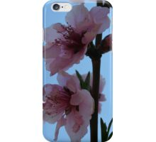 Pastel Pink of Peach Tree Blossom iPhone Case/Skin