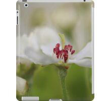 Macro Korean Sun Pear Blossom 2 iPad Case/Skin