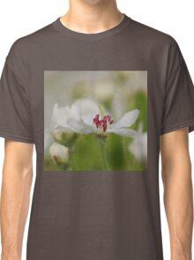 Macro Korean Sun Pear Blossom 2 Classic T-Shirt