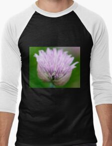 Chive Blossom and Hidden Fly Men's Baseball ¾ T-Shirt